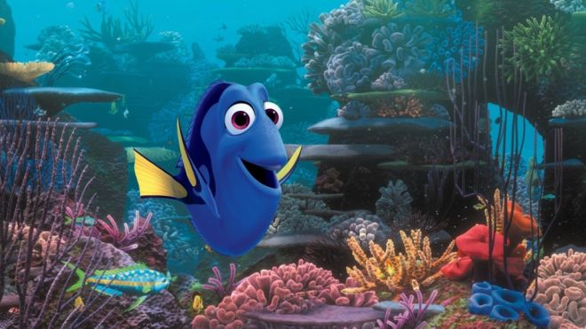 Finding Dory AP 660