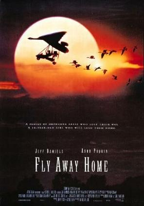 Fly_away_home_poster